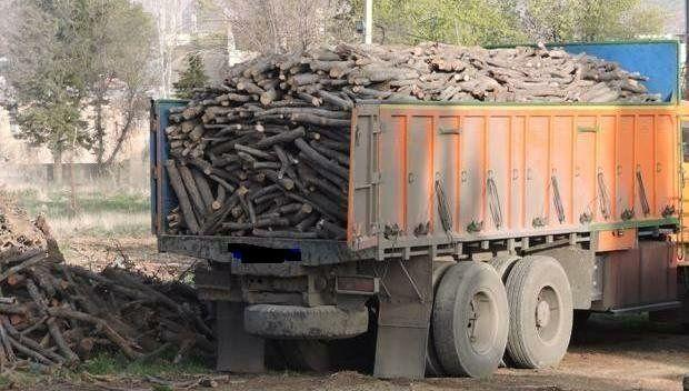 باغ های بوچارت | The Butchart Gardens